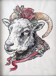 Scape Goat Study 2