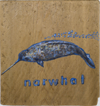 N for Narwhal