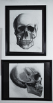 Skull 1 & 2 by Greg Barnes
