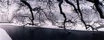 Roger Williams Park Snow