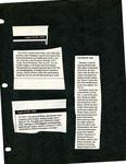 The NicePaper August 22- August 28, 1990