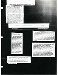 The Newpaper & The NicePaper October, 1990: Clippings