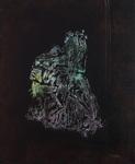 Symbiosis Fragmentary #37