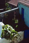 Yard at the Almeida Homstead