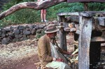 Man Operates a Sugar-Mill at a Trapiche
