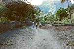 Rural Scenes Near Ribeira Brava