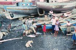 Unloading Catch at Tarrafal, São Nicolau