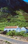 Farm on Mountainside