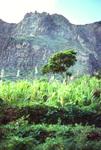 Snao Nicolau Interior Valley