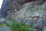Climbing Monte Verde