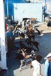 Offloading in Porto Novo