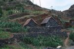 Mountain Side Farming