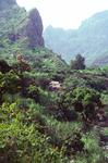 Stone Cottage in the Mountains; Santo Antao