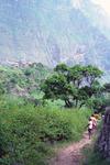 Rural Scene at Ribeira de Paùl