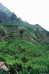 Cliffside Dwellings