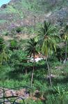 Home of John Peter Santos