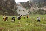 Farmers Planting Leucina in a Caldeira