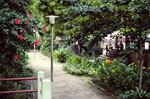 Ribeira Brava: Garden & Path