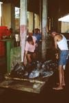 Tuna on Scale; Tuna Cannery