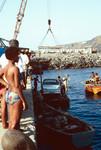 Docks, Porto de Vale de Cavaleiros
