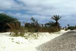 Sand Dunes of Boa Vista (1 of 2)