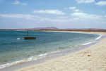 Praia de Cabral Coastline