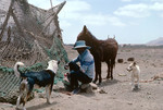 Farmer with Dogs and Donkey on Journey across Boa Vista to Praia Curralhino