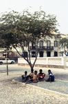 Portrait of Children Under a Tree