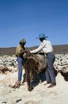 Fishermen Preparing for Travel