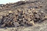 Scenes Near Limestone Quarry (1 of 3)