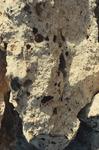 Scenes Near Limestone Quarry (2 of 3)
