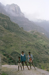 Three Boys and Terraced Hills