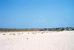 White Sand Near Vila do Maio
