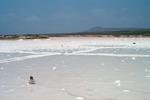 Salt Pans Outside Vila do Maio (4 of 6)