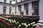 Newport: Rosecliff Garden