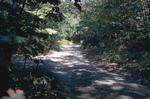Blackstone Park on Seekonk River- Providence