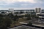University of Miami Coral Gables Campus