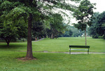 Radburn: Parks, Planned Community