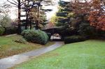 Radburn: Walkways and Public Parks