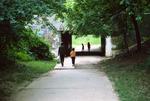 Greenbelt: Walkway