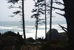 Canon Beach: Seaside