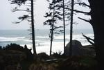 Canon Beach: Seaside