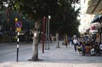 Tel Aviv: Dizengoff Street