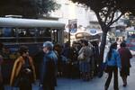 Tel Aviv: Bus Stop on Allenby Street