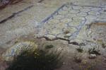 Massada: Tiles in Herod's Palace