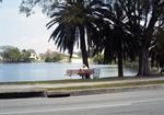 Florida: Mirror Lake