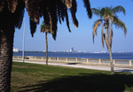 Florida: View from St. Petersburg to Tampa