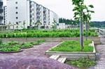 Stolkholm: Skärholmmen Apartments and Gardens